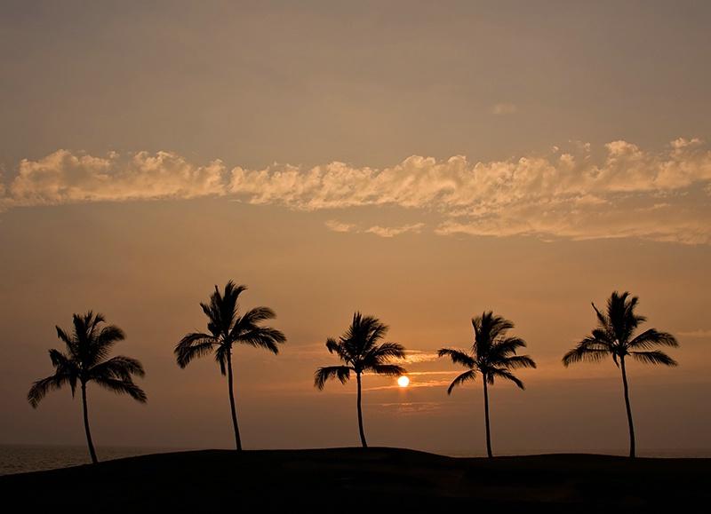 Essence of Hawaii