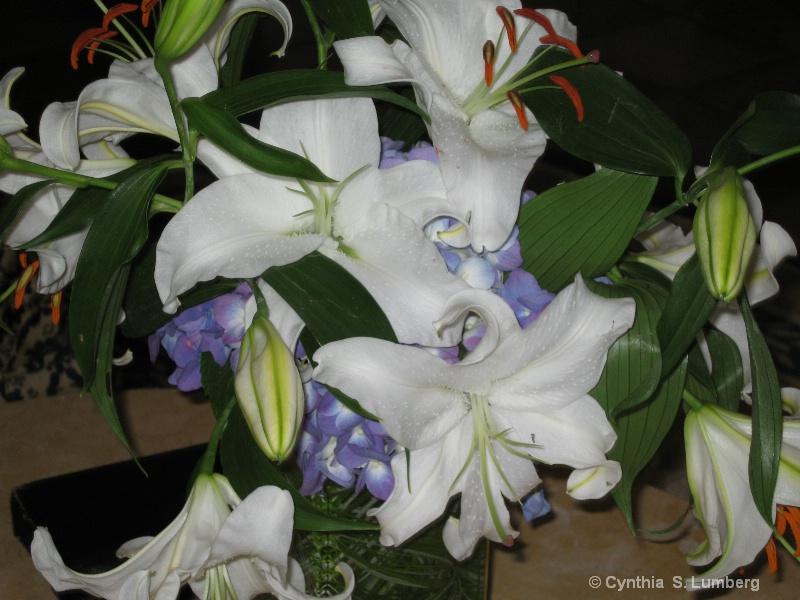 Bacara Flowers