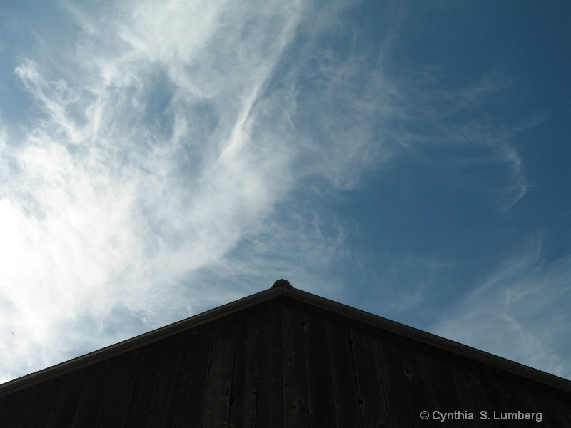 Farmland Sky