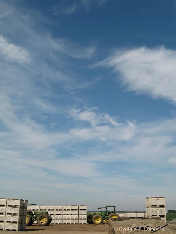 Farmland Sky 3