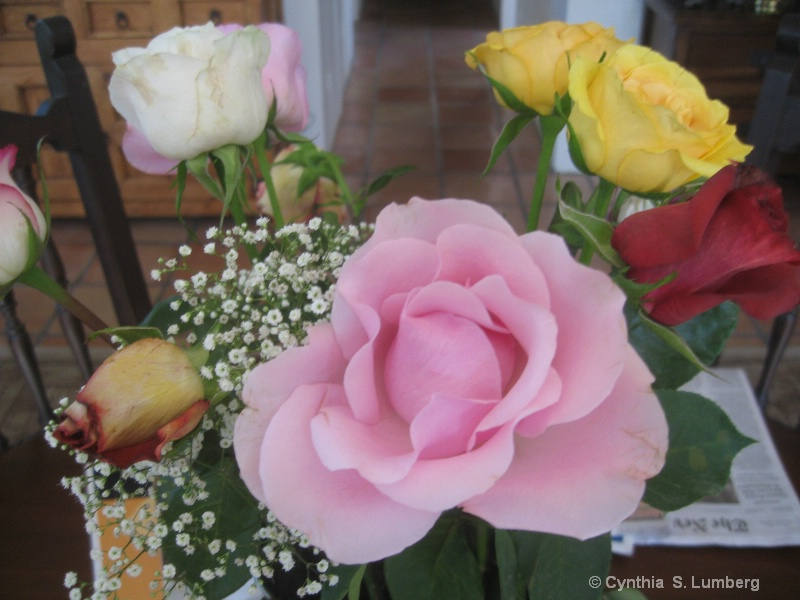 Roses. . .
