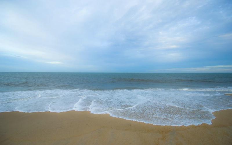 Just Shore