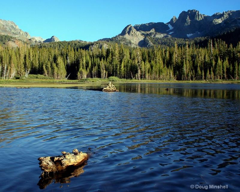Lake Mary Log