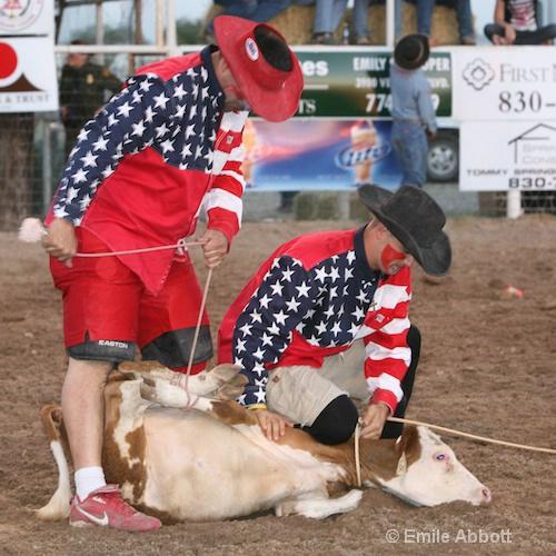 Rodeo Clowns check roped calf