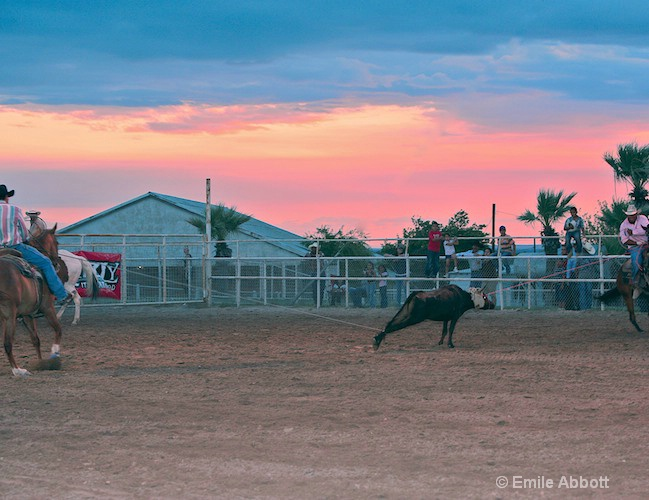 Twilight at the Rodeo Team Roping