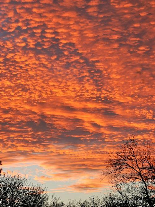 Big Sky of West Texas, Val Verde Co.