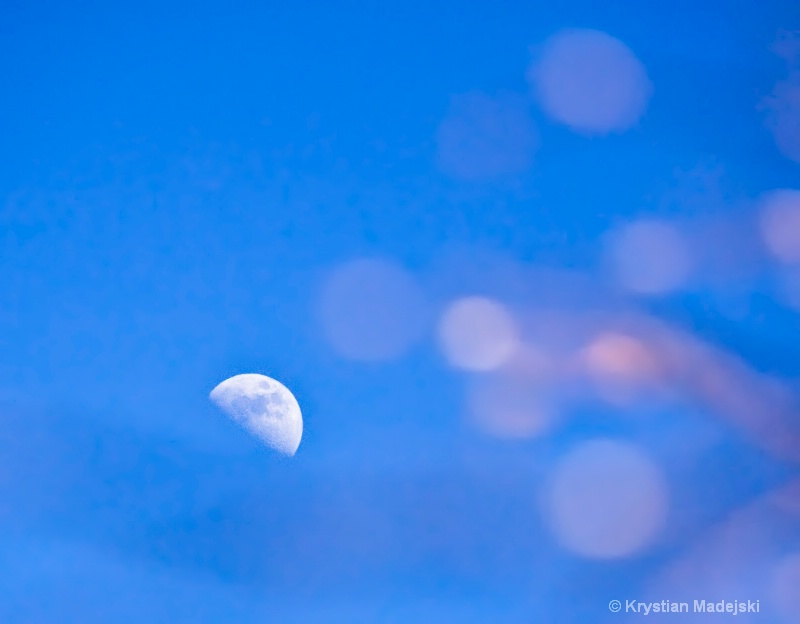 Moon at the day
