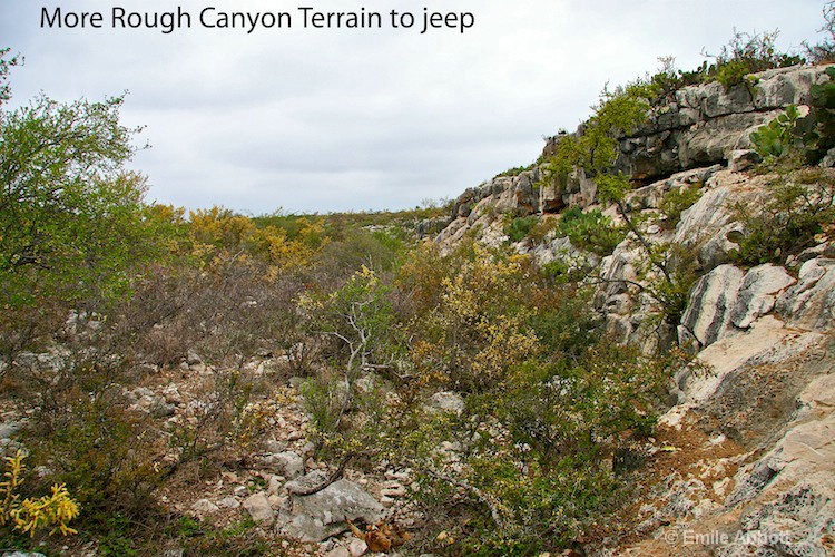 More of what the terrain in Rough Canyon is like
