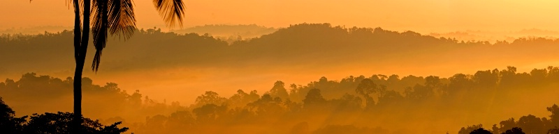 Western Ghats at Coorg, India