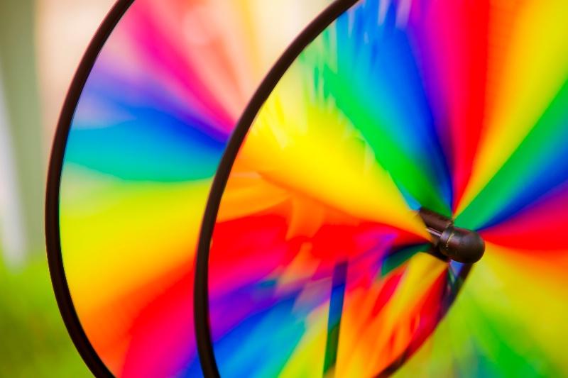 Rainbowed flyer