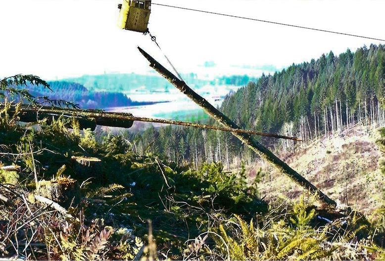 Hauling in the Logs, Logging-Oregon