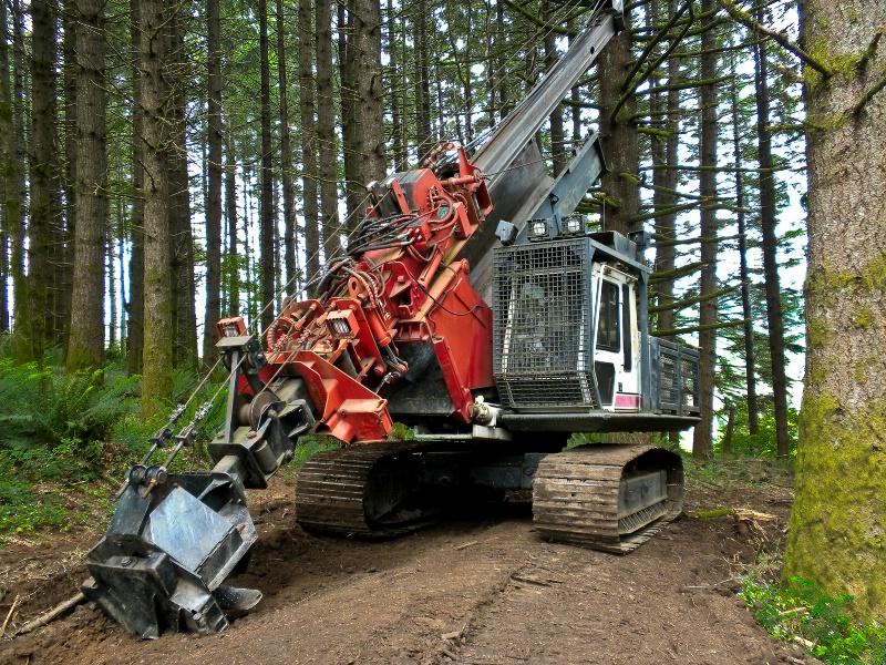 Log Processor, Logging-Oregon