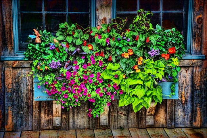 The Artful Planter