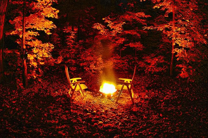 The Fire Light