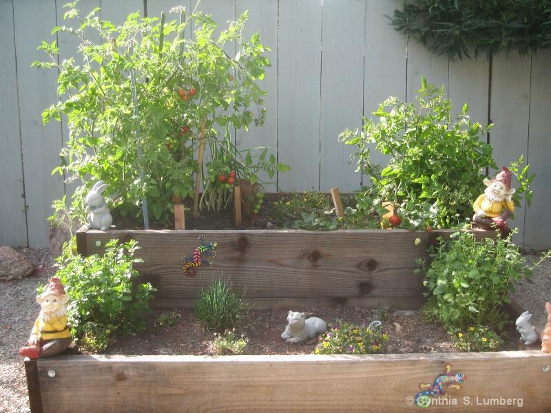 Luann's Garden. . .