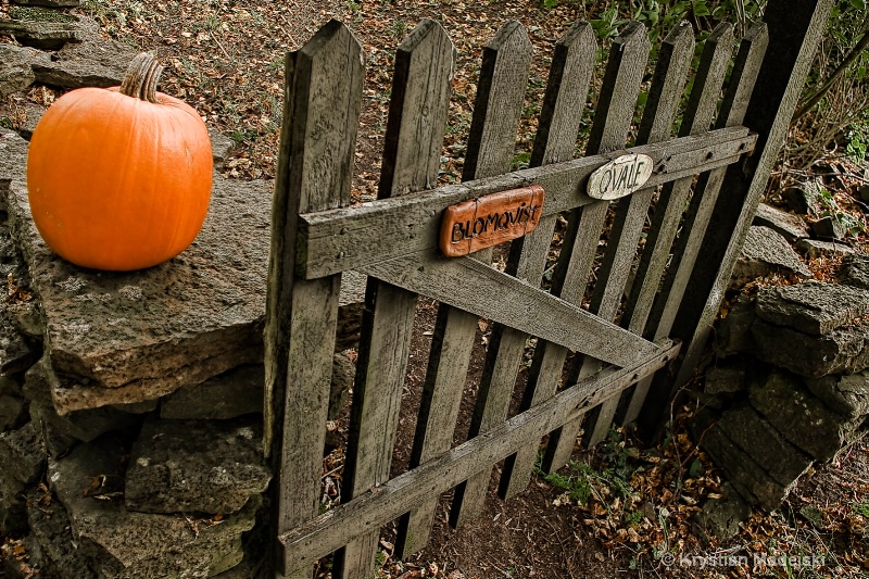 Pumpkin and the gate