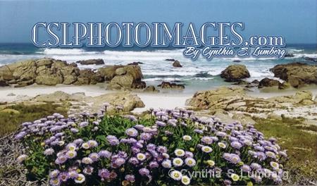CSLPHOTOIMAGES.COM