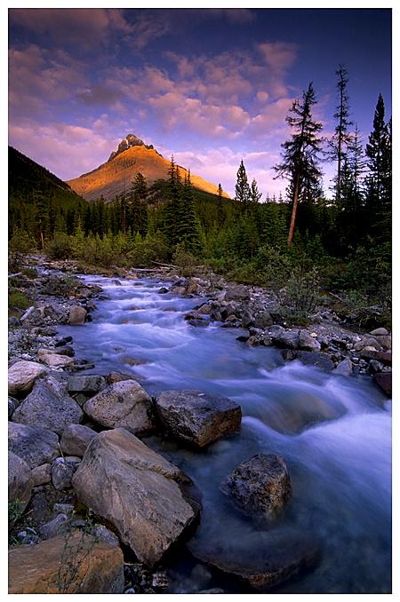 Roadside Creek, Banff NP