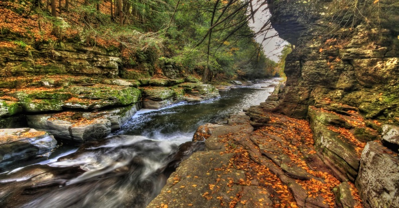 Callicoon Creek Gorge