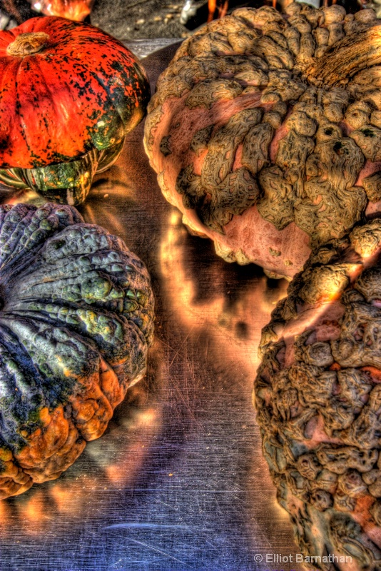 Fall Harvest 4