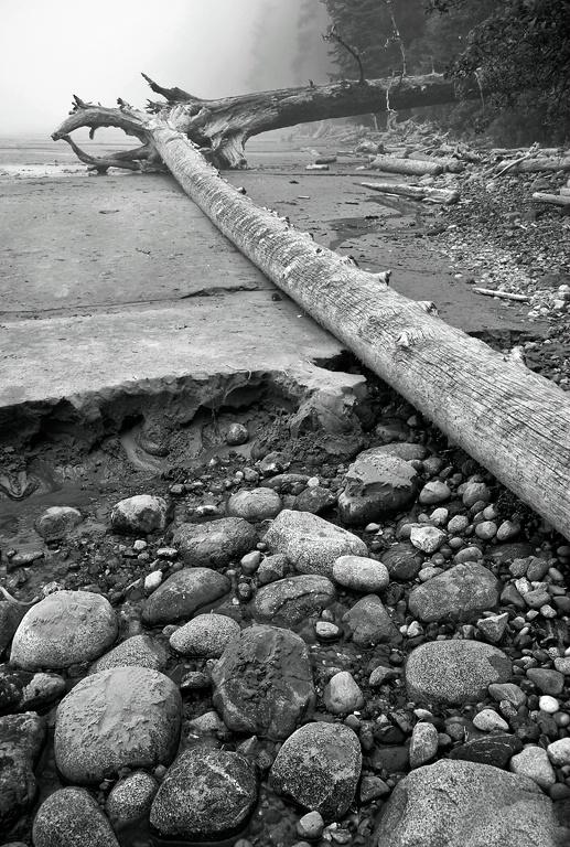 Ucluelet Beach