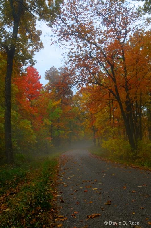Fall morning at Tar Hollow State Park