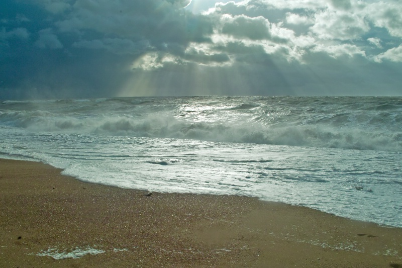 November in Burton Bradstock