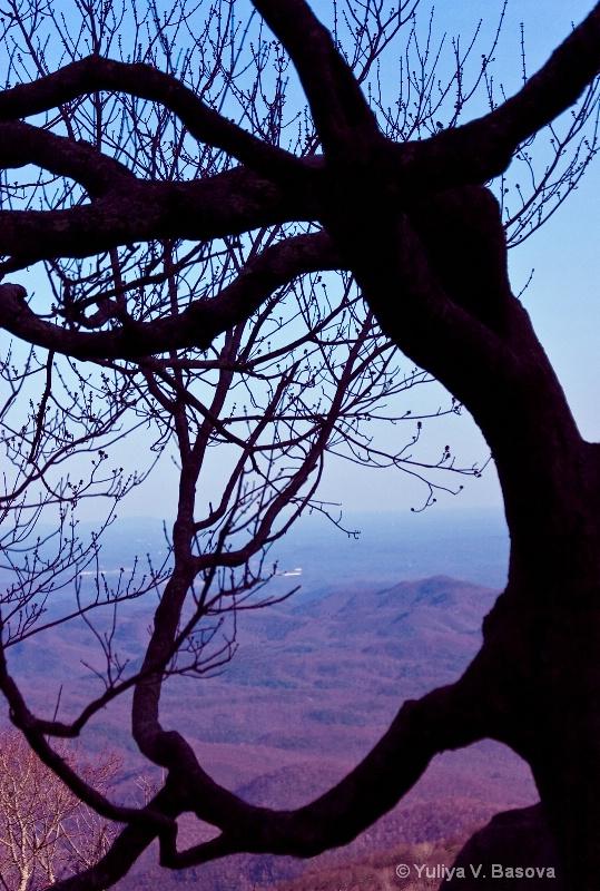 Ghost of the Blue Ridge