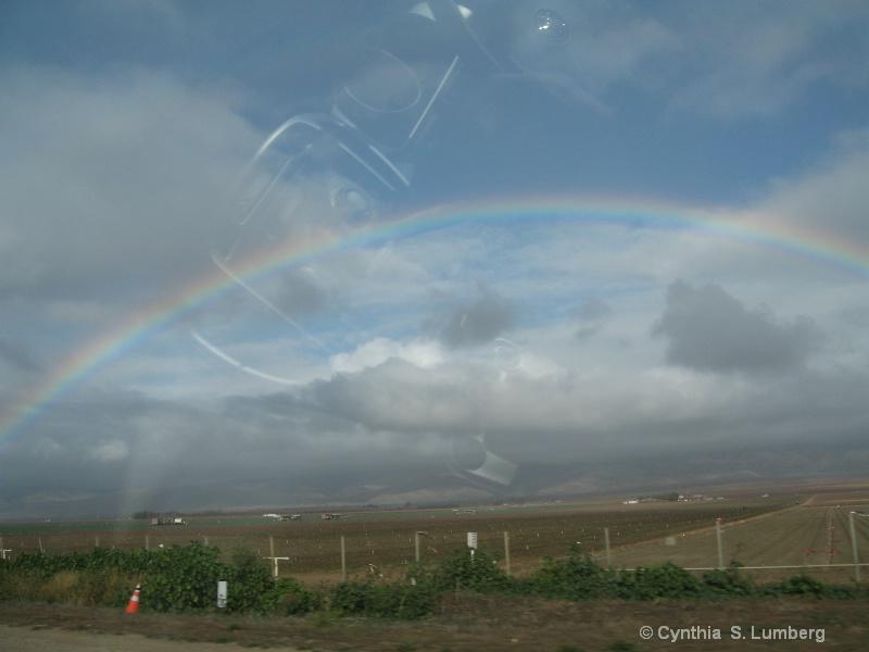 Rainbow Light. . .