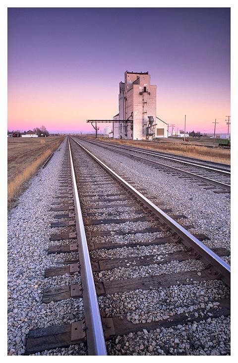 Prairie Tracks