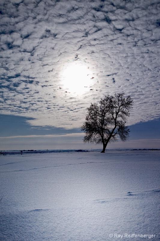 Winter 2009 5699