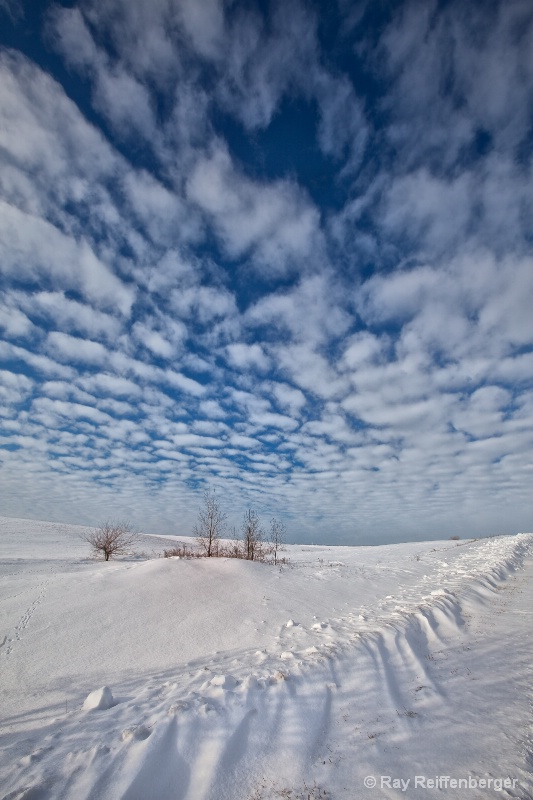 Winter 2009 5808