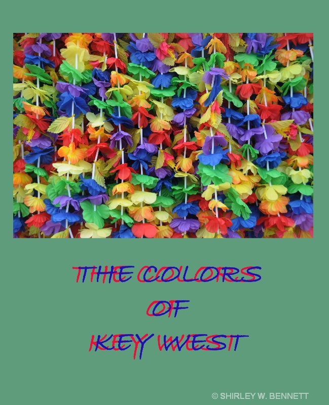 VIBRANT COLORS OF KEY WEST