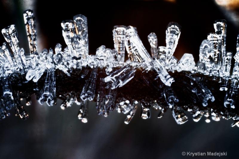 Icy plant