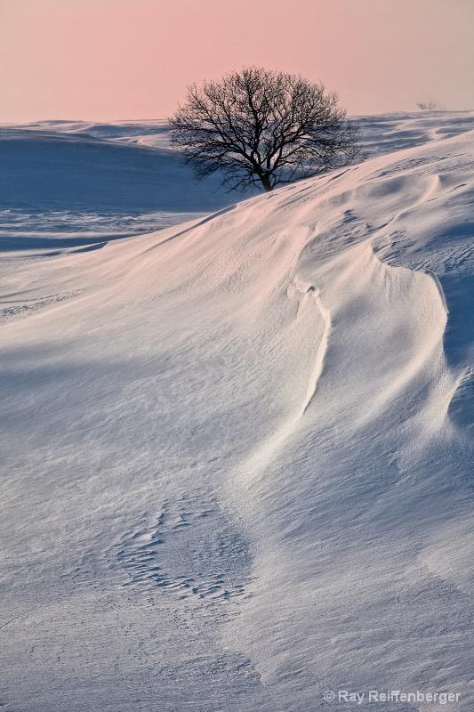 Winter 2009 5955