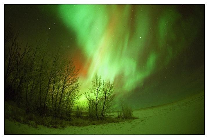 Winter Aurora, Southern Saskatchewan