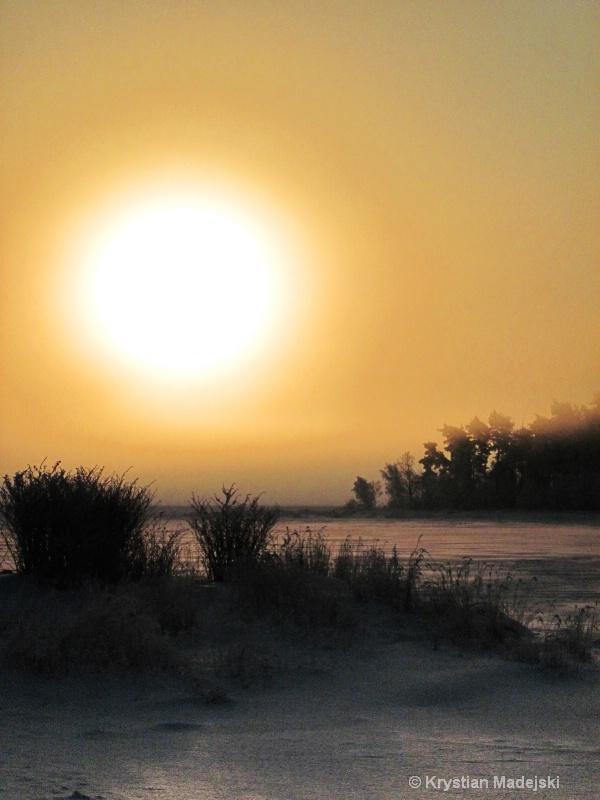 Sunrise and frosty bushes