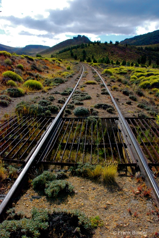 The Tracks Go on Forever; Patagonia