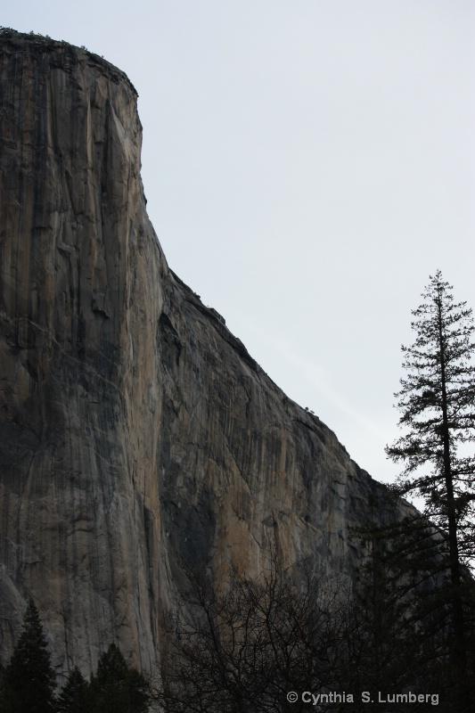 Winter in Yosemite, CA