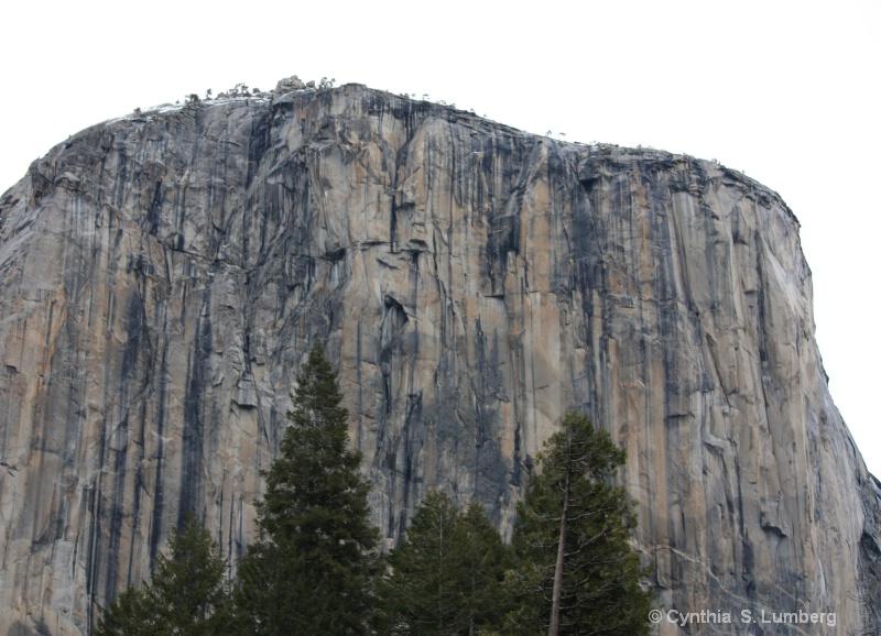 El Capitan - Yosemite, CA