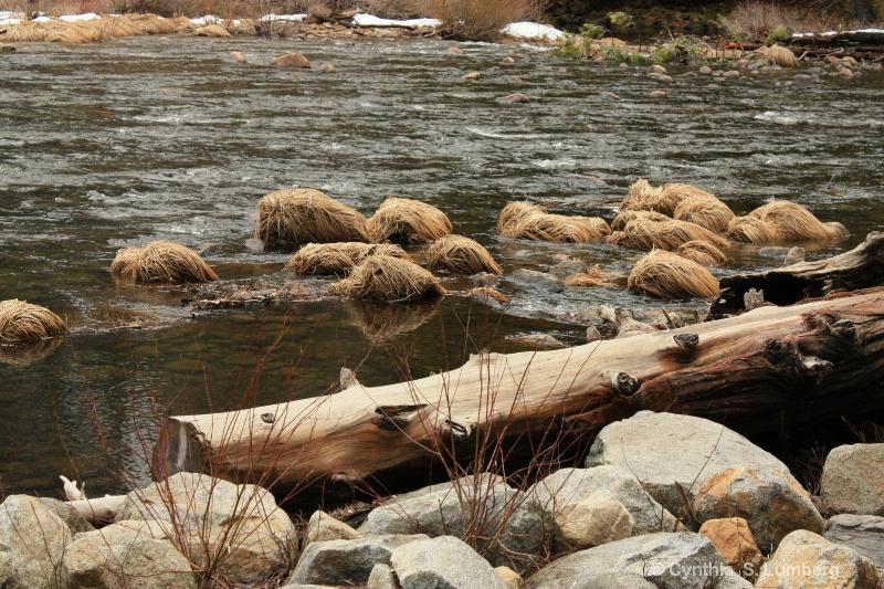 The Merced River, Yosemite, CA