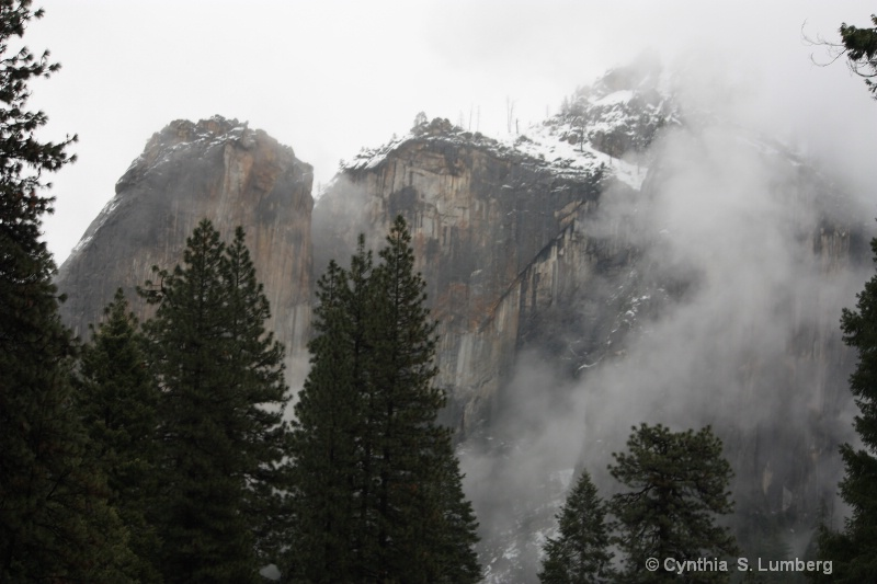 Winterland - Yosemite, CA