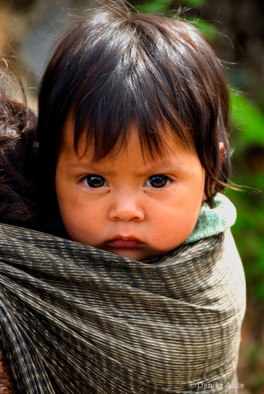Baby in Shawl