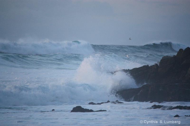 High Surf. . .
