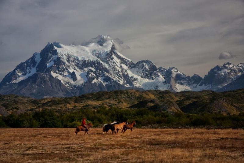 Rancher's Paradise