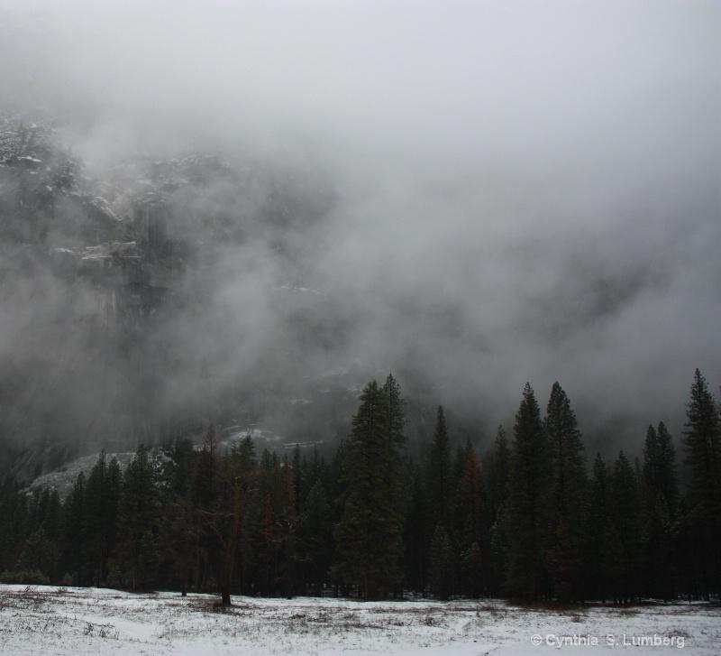 Winter's Mist. . .Yosemite, CA