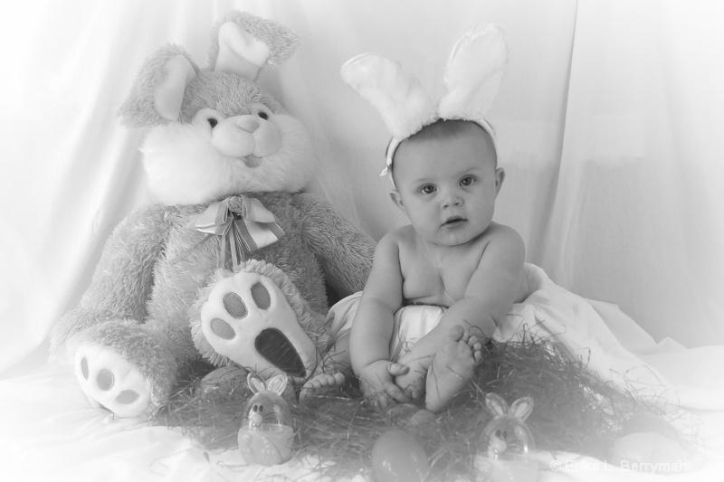 How many bunnies?