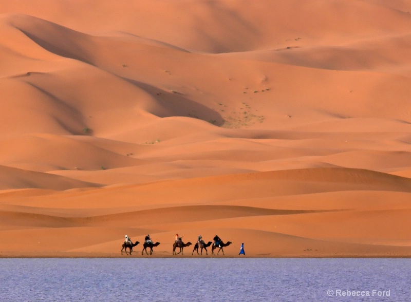 Sand , Water and Camels