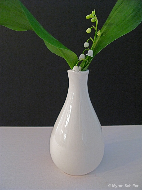 Lilly of the Valley I