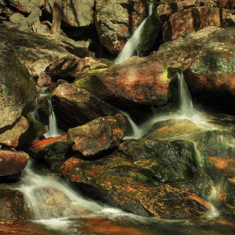 Pine Meadows Creek Falls